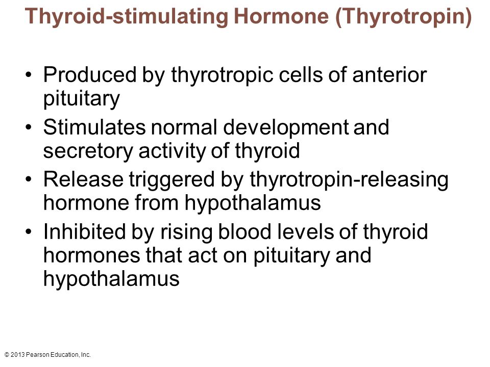© 2013 Pearson Education, Inc. Thyroid-stimulating Hormone (Thyrotropin) Produced by thyrotropic cells of anterior pituitary Stimulates normal develop