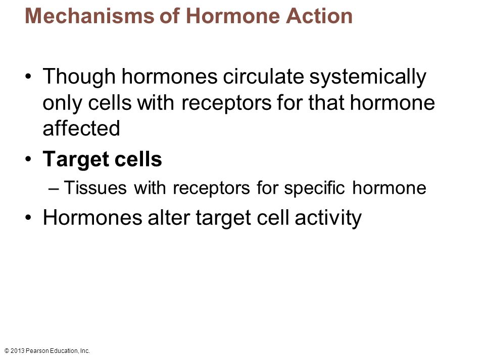© 2013 Pearson Education, Inc. Mechanisms of Hormone Action Though hormones circulate systemically only cells with receptors for that hormone affected