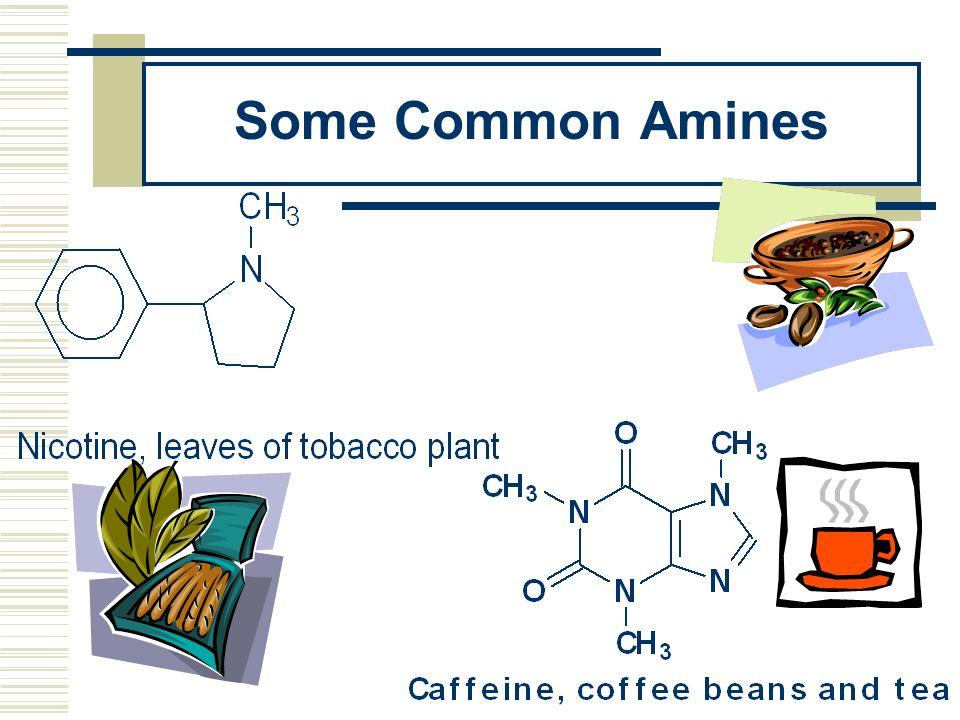 Some Common Amines