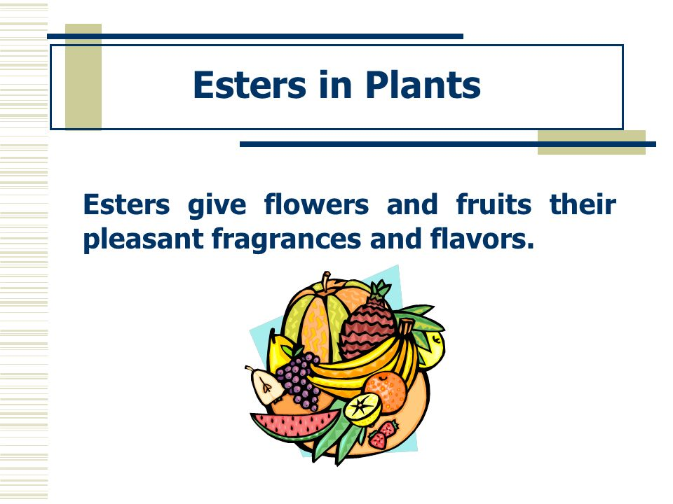 Esters in Plants Esters give flowers and fruits their pleasant fragrances and flavors.