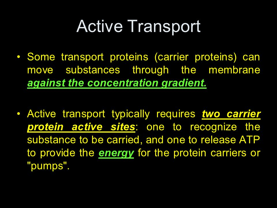 Active Transport Some transport proteins (carrier proteins) can move substances through the membrane against the concentration gradient. Active transp