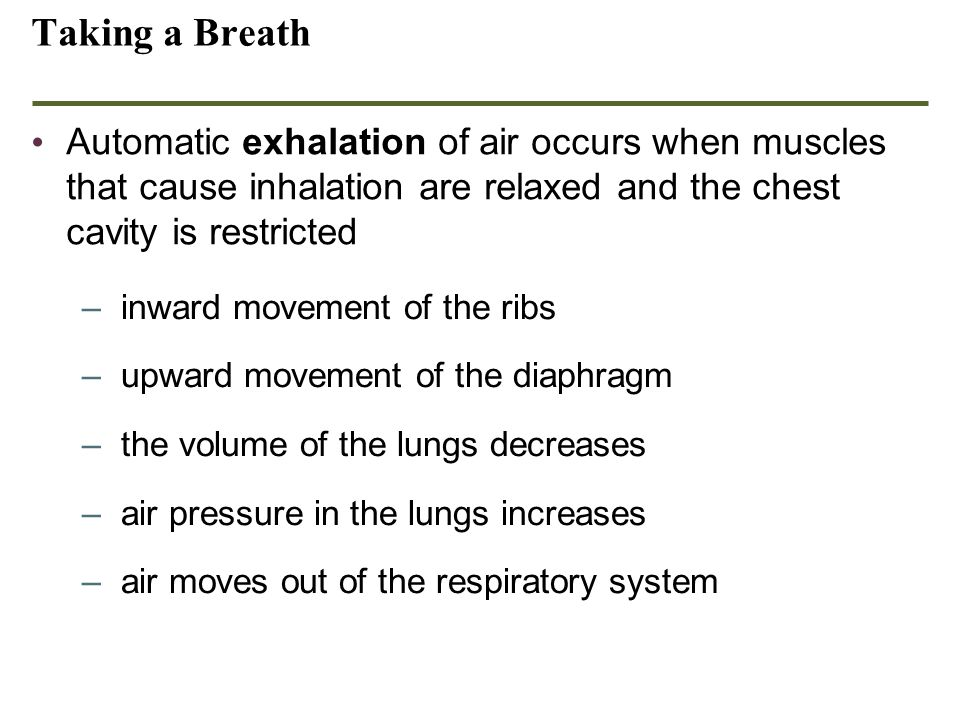 Taking a Breath Automatic exhalation of air occurs when muscles that cause inhalation are relaxed and the chest cavity is restricted –inward movement