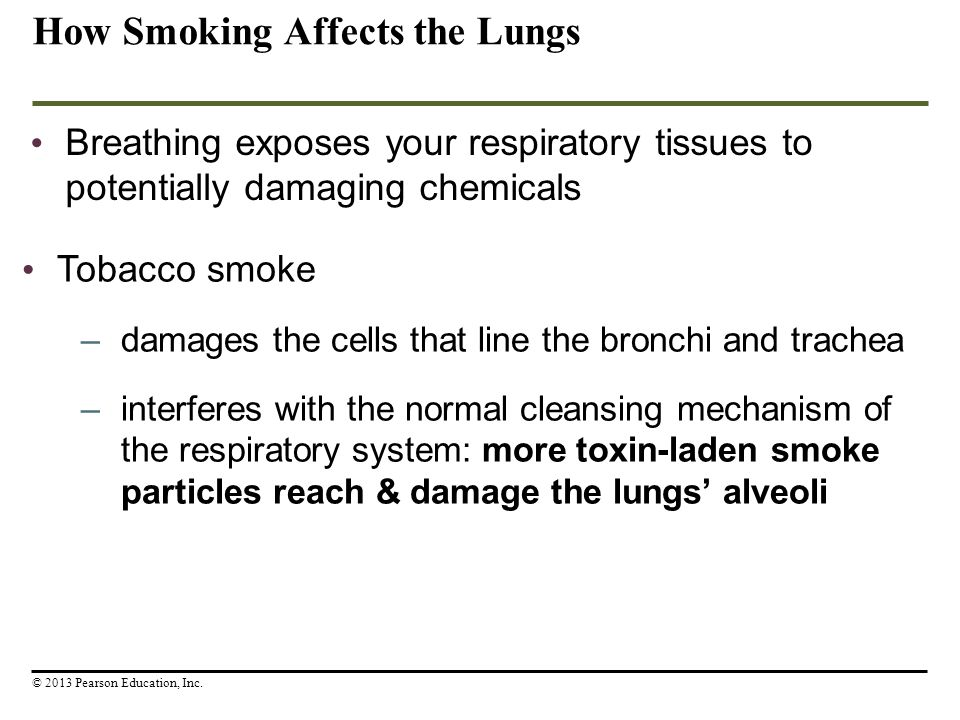 How Smoking Affects the Lungs Breathing exposes your respiratory tissues to potentially damaging chemicals © 2013 Pearson Education, Inc. Tobacco smok