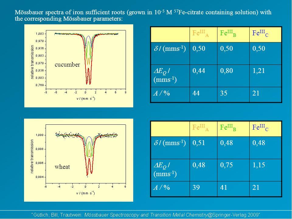 Fe III A Fe III B Fe III C / (mms -1 ) 0,50 E Q / (mms -1 ) 0,440,801,21 A / %443521 Fe III A Fe III B Fe III C / (mms -1 ) 0,510,48 E Q / (mms -1 ) 0