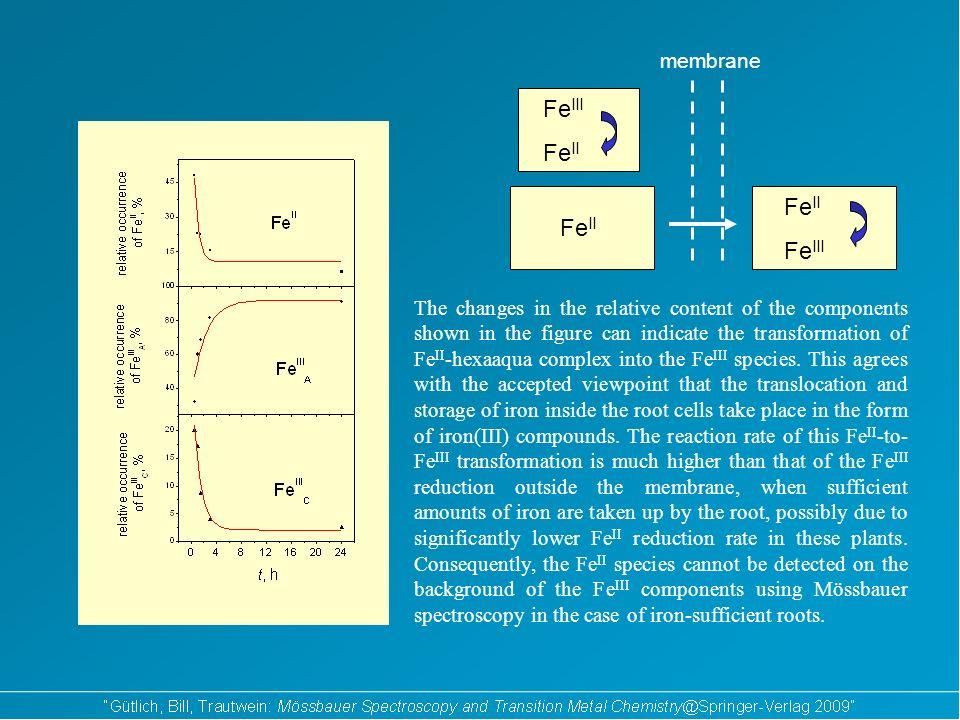 10 -5 M 10 -4 M 510 -5 M 510 -4 M Mössbauer spectra of iron deficient roots which were kept in iron containig nutrient solutions for 30 min.