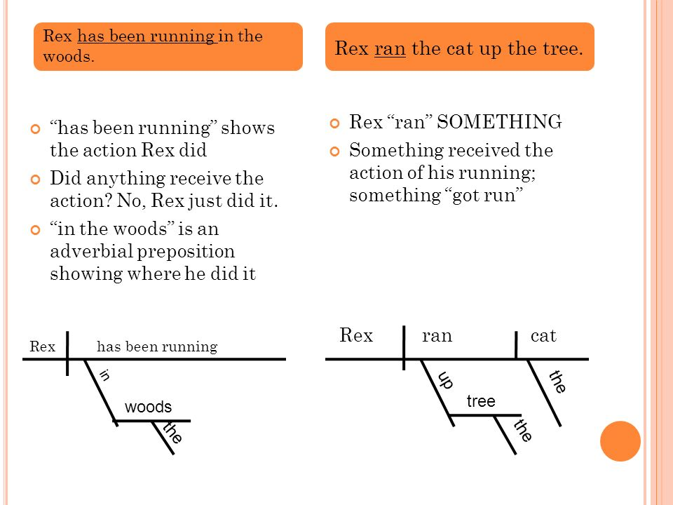 has been running shows the action Rex did Did anything receive the action? No, Rex just did it. in the woods is an adverbial preposition showing where