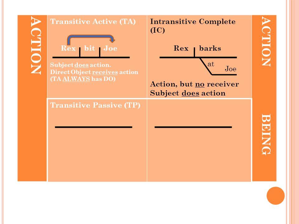 ACTION Transitive Active (TA) Rex bit Joe Subject does action.