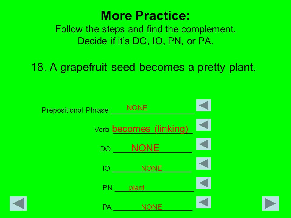 More Practice: Follow the steps and find the complement. Decide if its DO, IO, PN, or PA. 18. A grapefruit seed becomes a pretty plant. Prepositional
