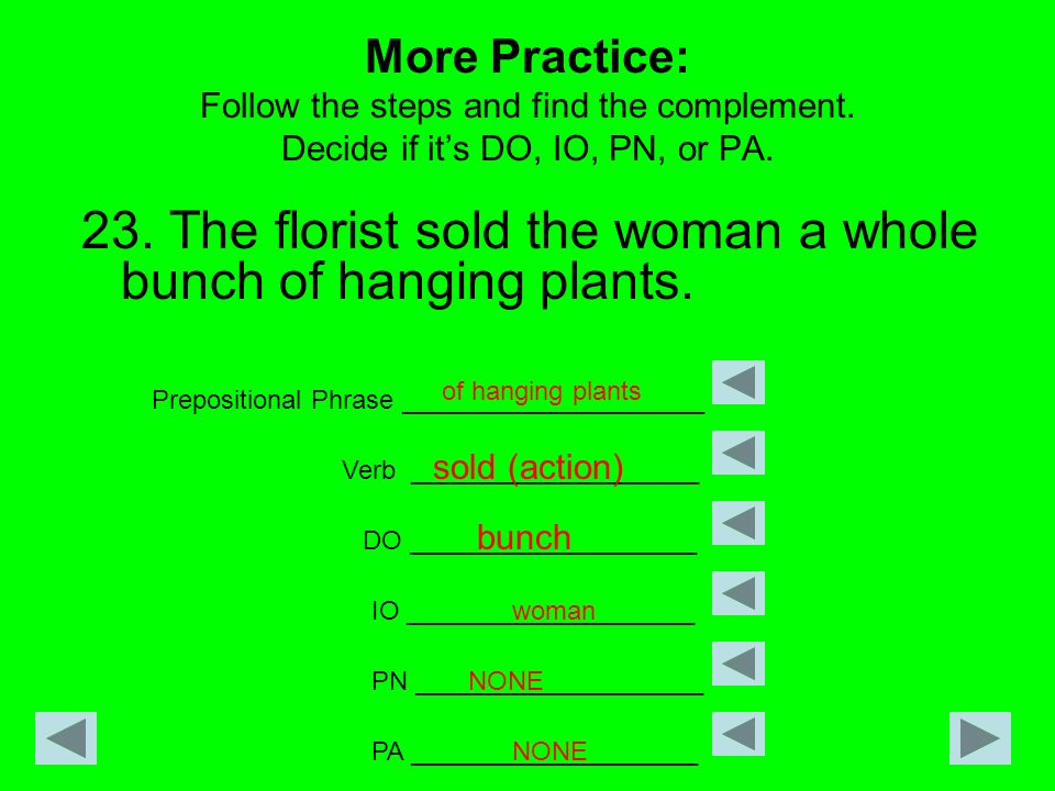 More Practice: Follow the steps and find the complement. Decide if its DO, IO, PN, or PA. 23. The florist sold the woman a whole bunch of hanging plan