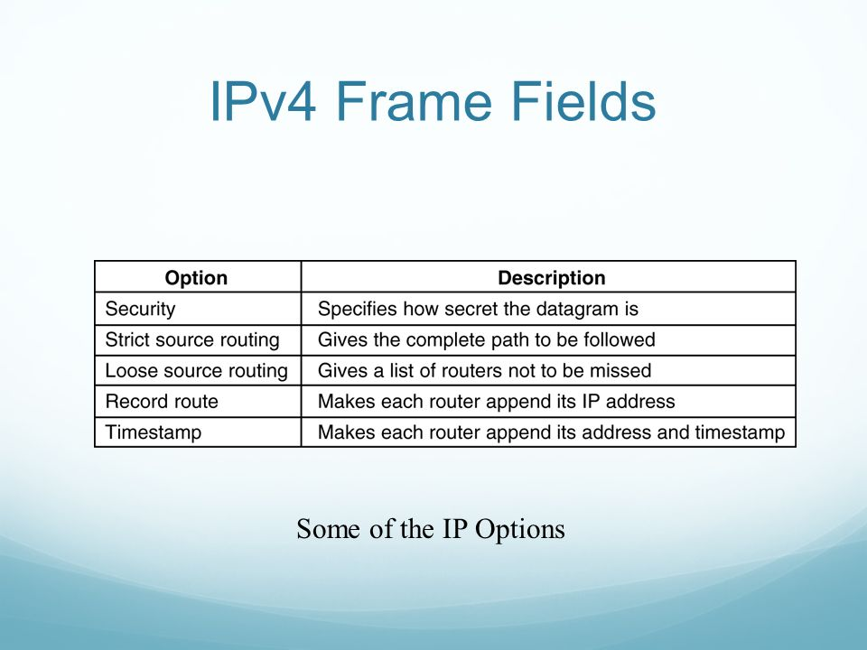 IPv4 Frame Fields Some of the IP Options