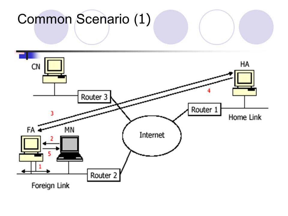 Common Scenario (1)