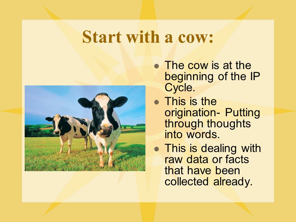 Start with a cow: The cow is at the beginning of the IP Cycle. This is the origination- Putting through thoughts into words. This is dealing with raw