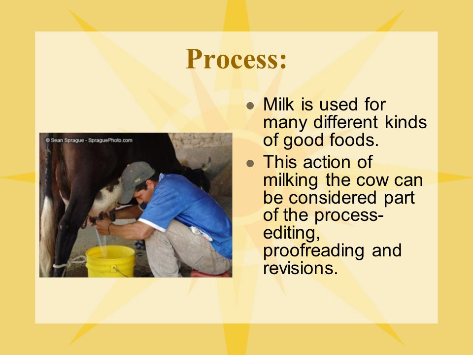 Process: Milk is used for many different kinds of good foods. This action of milking the cow can be considered part of the process- editing, proofread
