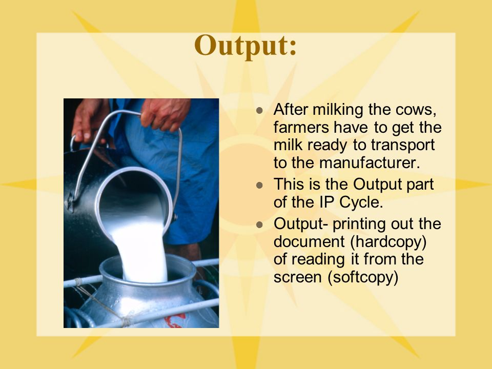 Output: After milking the cows, farmers have to get the milk ready to transport to the manufacturer. This is the Output part of the IP Cycle. Output-