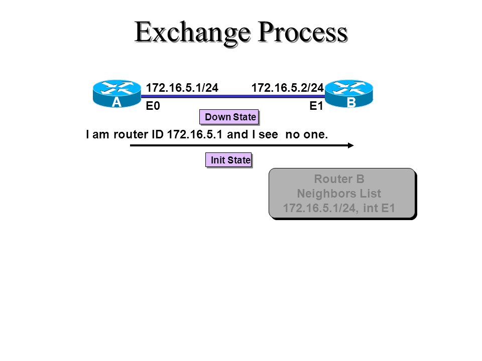 Exchange Process 172.16.5.1/24 E0 172.16.5.2/24 E1 A B Down State