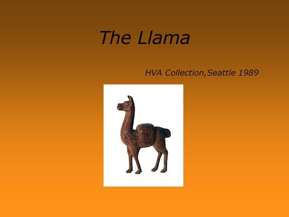 The Llama HVA Collection,Seattle 1989