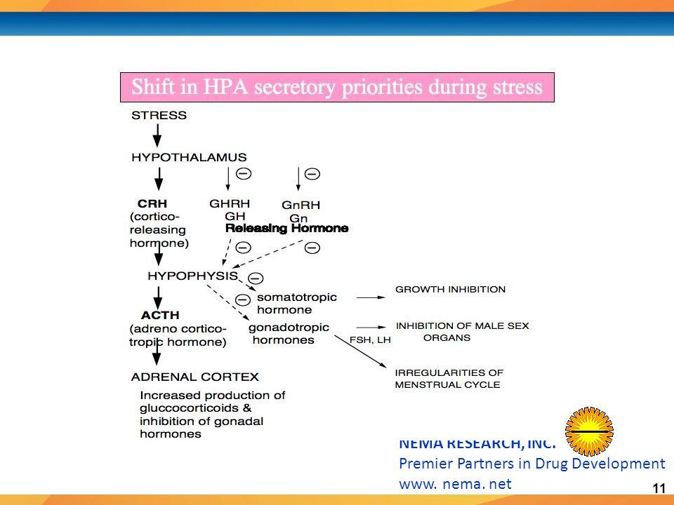 11 NEMA RESEARCH, INC. Premier Partners in Drug Development www. nema. net