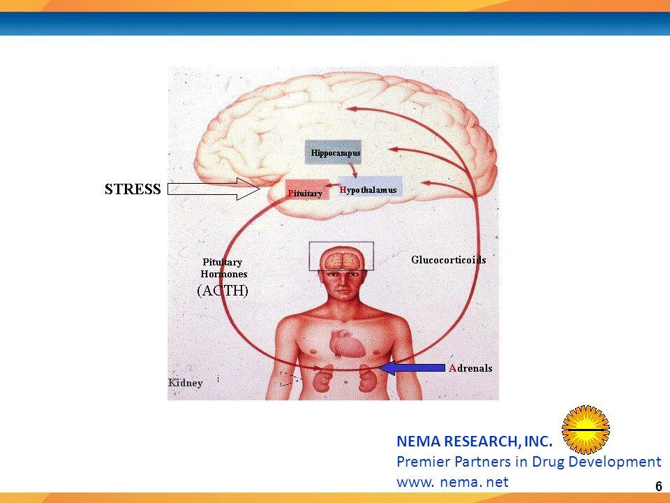 6 NEMA RESEARCH, INC. Premier Partners in Drug Development www. nema. net