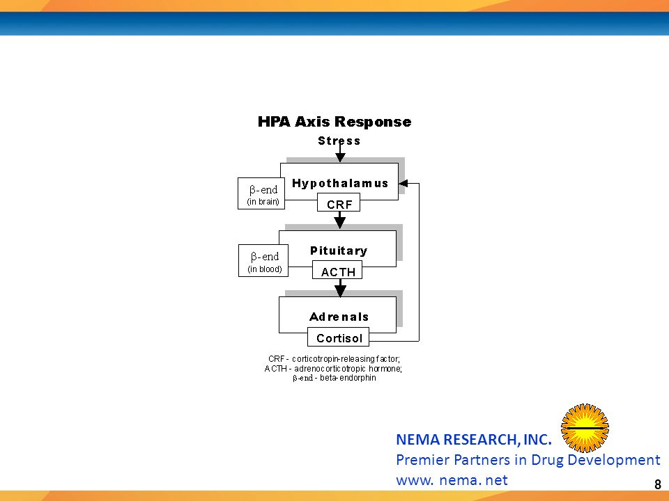 9 NEMA RESEARCH, INC.Premier Partners in Drug Development www.