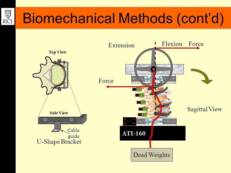 Sagittal View ATI-160 Dead Weights Extension FlexionForce U-Shape Bracket Cable guide Side View Top View Biomechanical Methods (contd)
