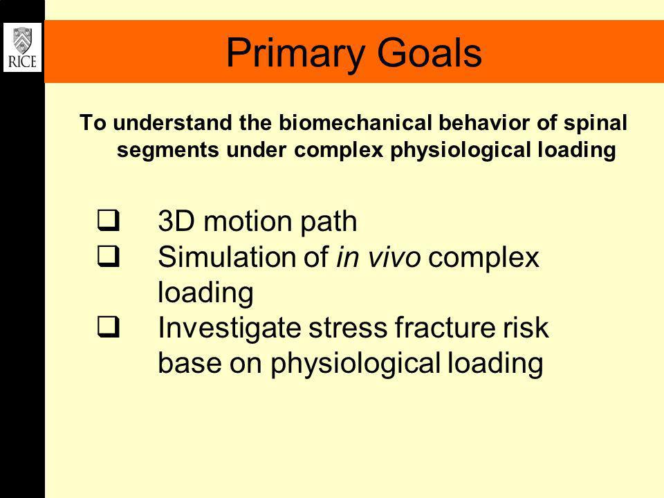 Primary Goals To understand the biomechanical behavior of spinal segments under complex physiological loading 3D motion path Simulation of in vivo com