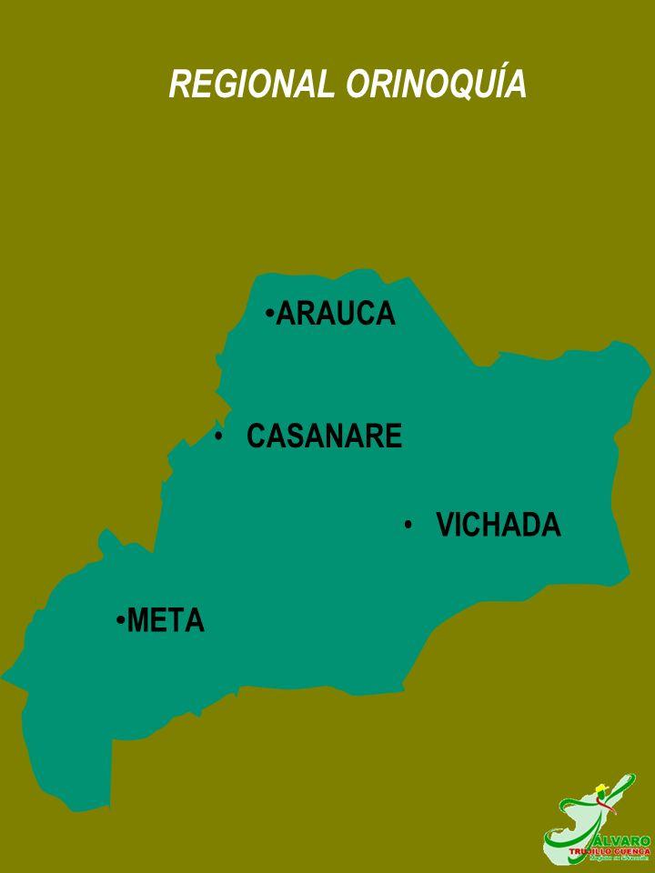 REGIONAL ORINOQUÍA ARAUCA META CASANARE VICHADA