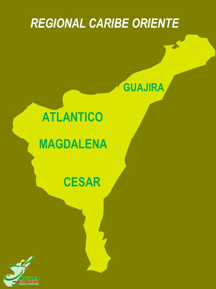 REGIONAL CARIBE ORIENTE GUAJIRA MAGDALENA ATLANTICO CESAR