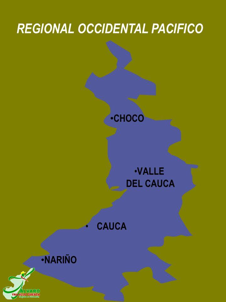 VALLE DEL CAUCA REGIONAL OCCIDENTAL PACIFICO CAUCA CHOCO NARIÑO