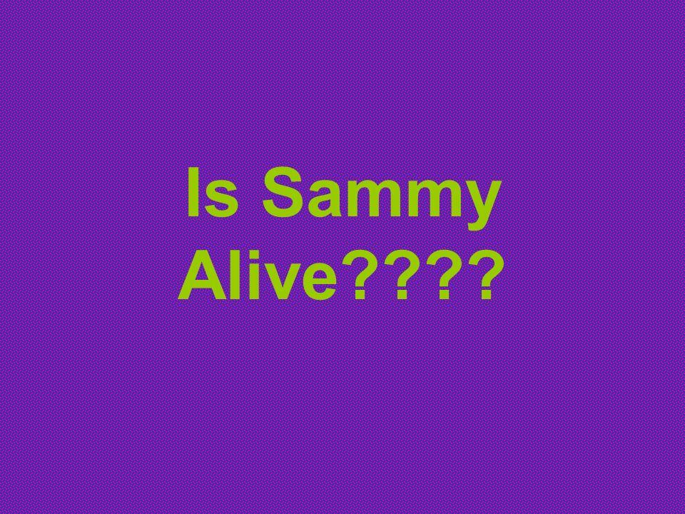 Is Sammy Alive????