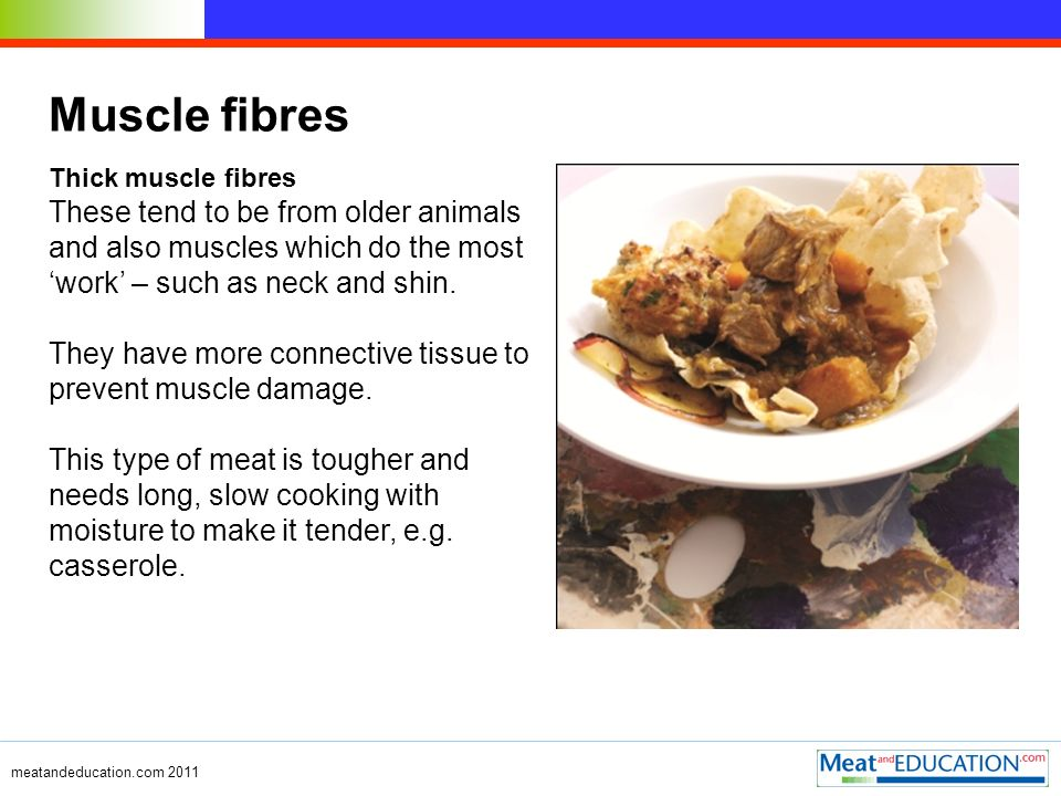 meatandeducation.com 2011 Muscle fibres Thick muscle fibres These tend to be from older animals and also muscles which do the most work – such as neck and shin.