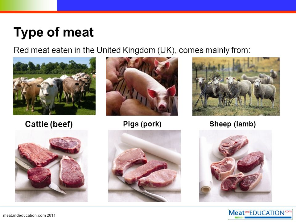 meatandeducation.com 2011 Type of meat Red meat eaten in the United Kingdom (UK), comes mainly from: Cattle (beef) Pigs (pork)Sheep (lamb)