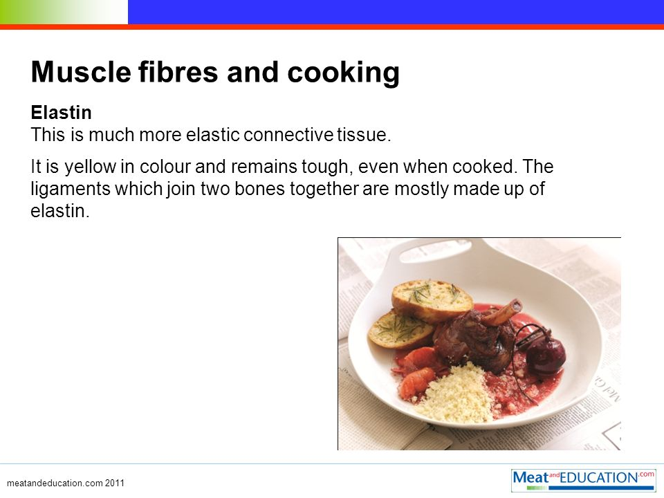 meatandeducation.com 2011 Muscle fibres and cooking Elastin This is much more elastic connective tissue.