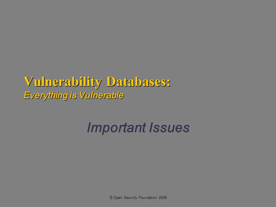 © Open Security Foundation 2005 Vulnerability Databases: Everything is Vulnerable Important Issues