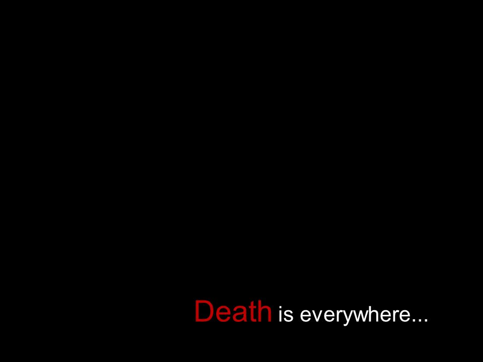 Death is everywhere...