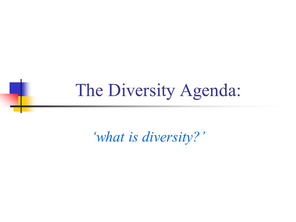 The Diversity Agenda: what is diversity