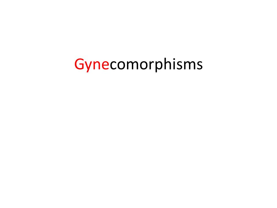 Gynecomorphisms