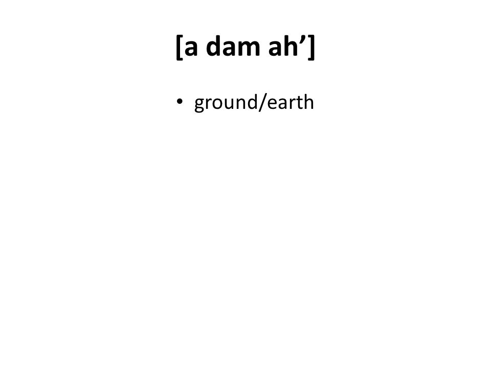 [a dam ah] ground/earth