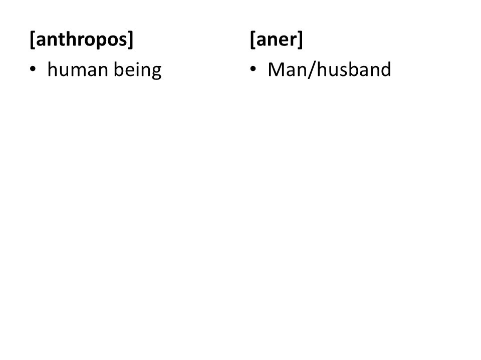 [gyne] Woman/wife [aner] Man/husband