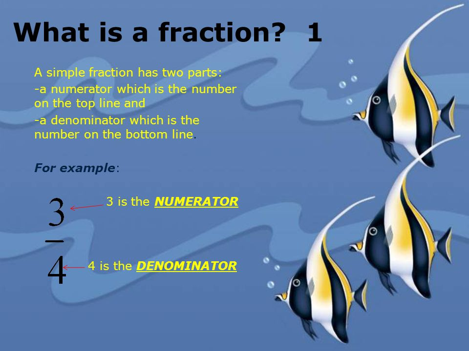 What is a fraction? 1 A simple fraction has two parts: -a numerator which is the number on the top line and -a denominator which is the number on the