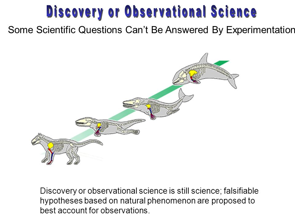 Some Scientific Questions Cant Be Answered By Experimentation Discovery or observational science is still science; falsifiable hypotheses based on nat