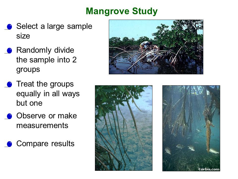 Select a large sample size Randomly divide the sample into 2 groups Treat the groups equally in all ways but one Observe or make measurements Compare