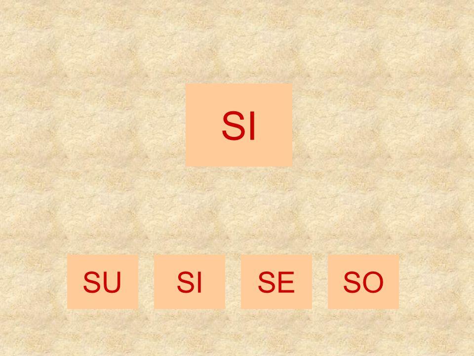 SA SESOSU