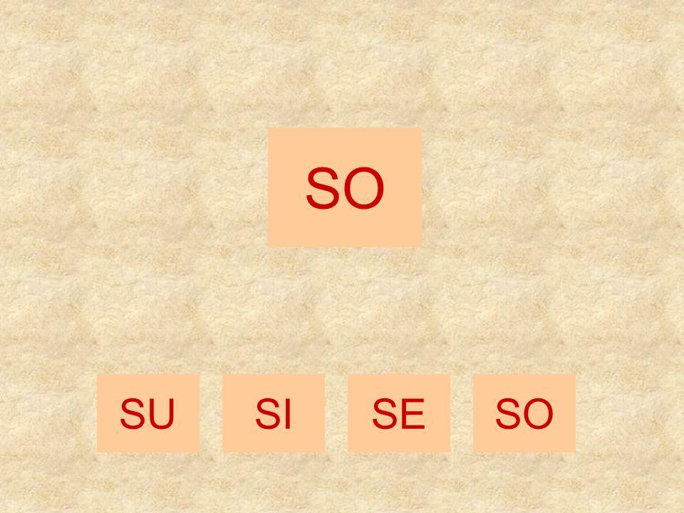 SI SESOSU