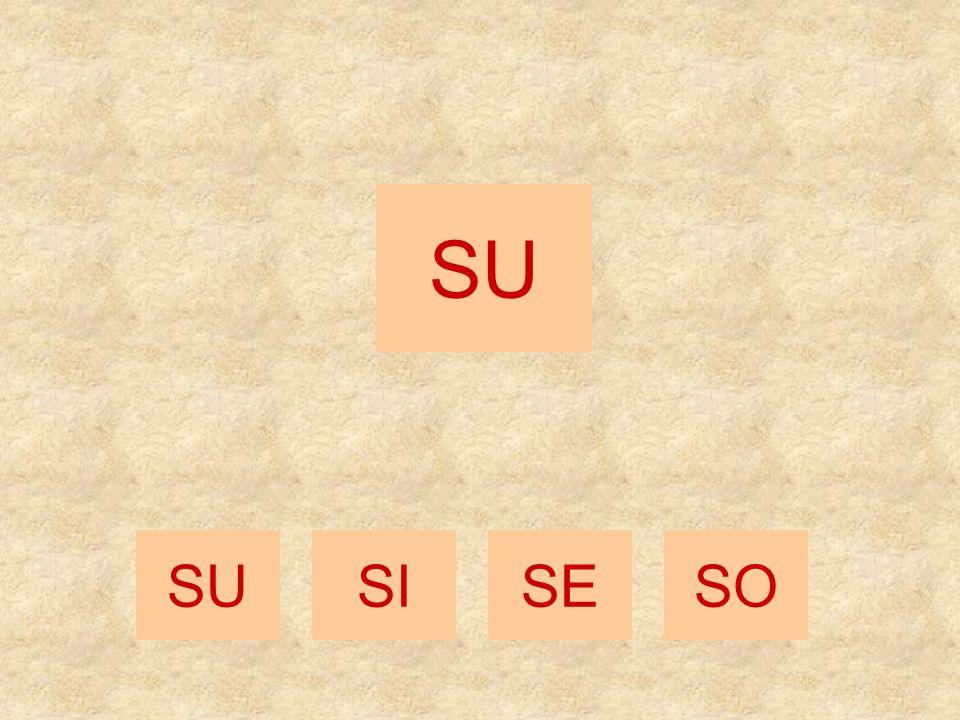 SO SISESOSU