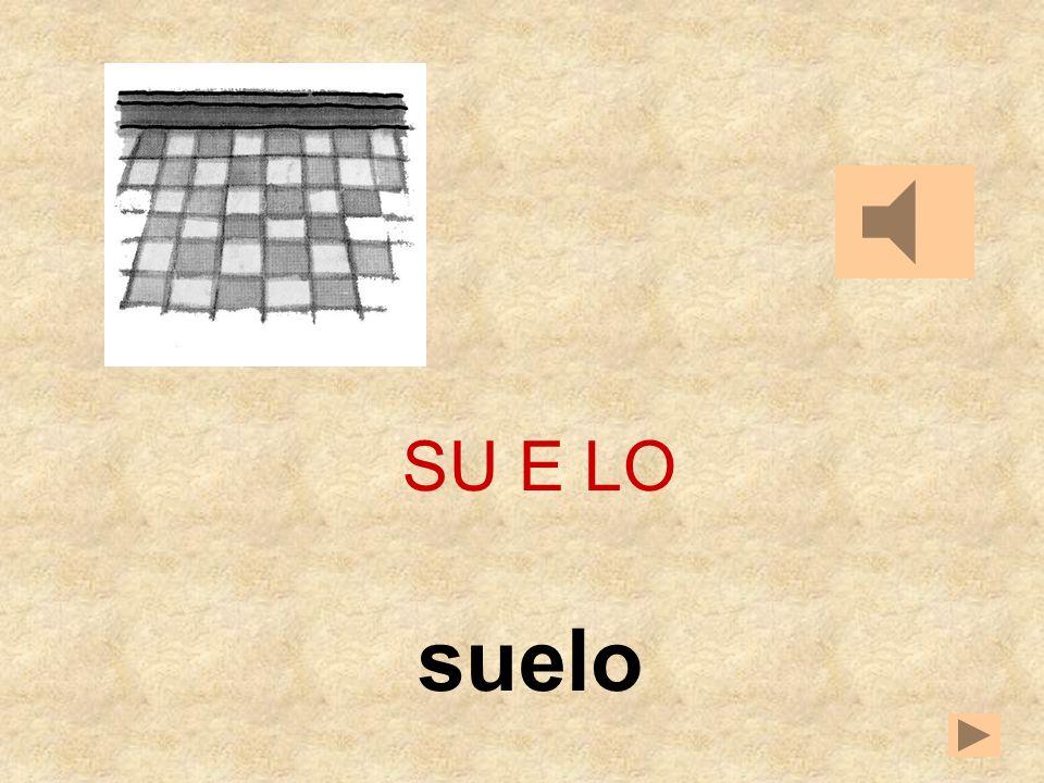 LEESOLOSU SU E __