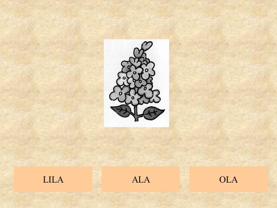 ALALILAOLA