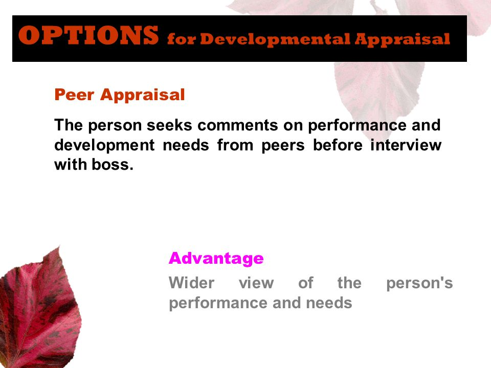 OPTIONS for Developmental Appraisal Peer Appraisal The person seeks comments on performance and development needs from peers before interview with bos