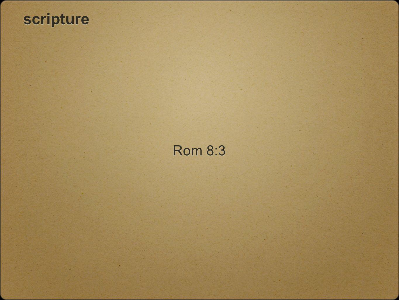 scripture Rom 8:3
