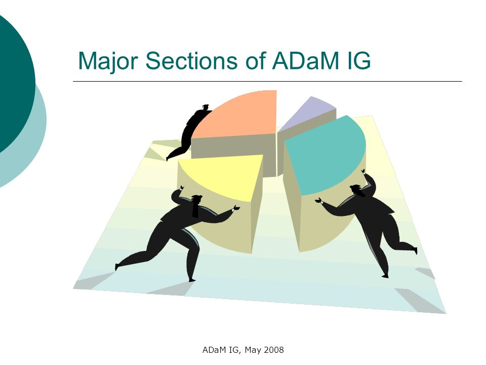 ADaM IG, May 2008 Major Sections of ADaM IG