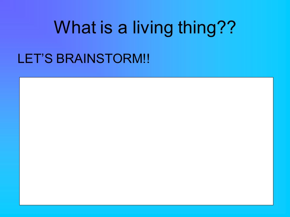 What is a living thing?? LETS BRAINSTORM!!